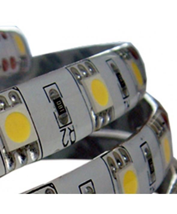 TIRA LED 5m 60x/m ADHES.12V IP33 SMD5050 BLANCO FRIO