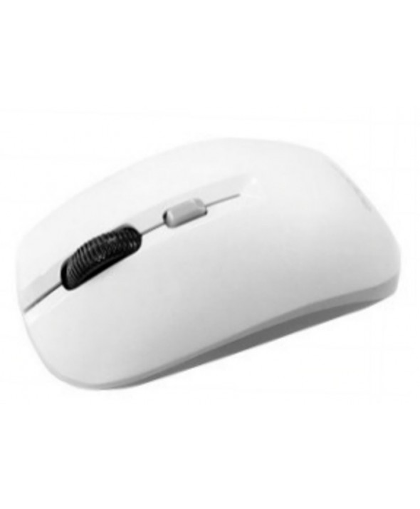 RATON OPTICO Usb WIRELESS 2.4GHz BLANCO/GRIS APPROX